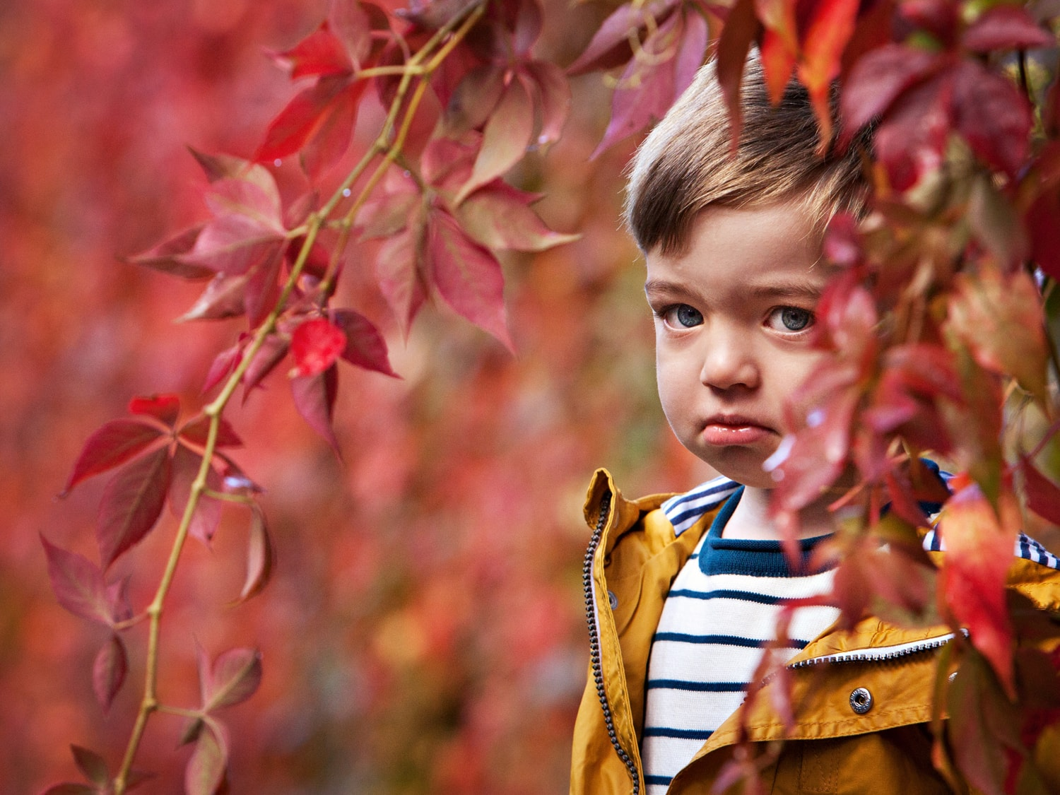 Little boy sulking surrounded by Autumn leaves