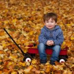 Little boy in jeans and a jumper sat in the Autumn leaves in a little red truck